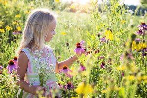 Punture di insetti in bambini e neonati, le cose da sapere